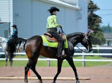 riding show